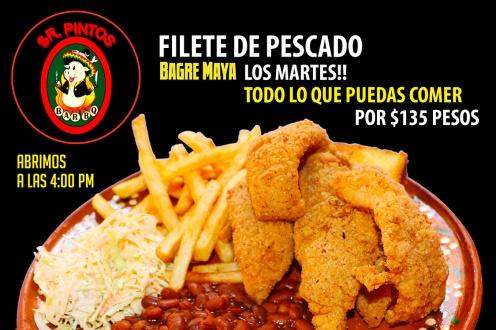 Bagre-Maya-Pintos